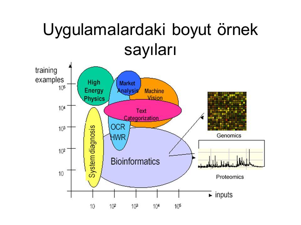 Uygulamalardaki boyut örnek sayıları