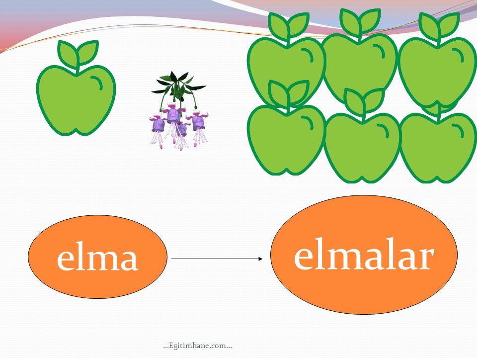 elma elmalar...Egitimhane.com...
