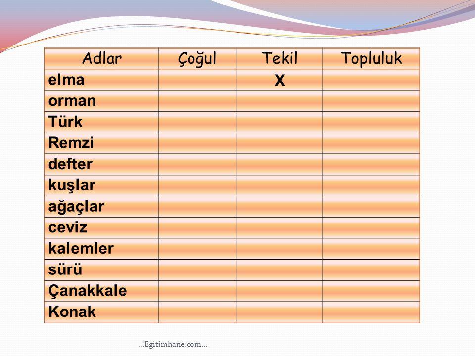 AdlarÇoğulTekilTopluluk elma X orman Türk Remzi defter kuşlar ağaçlar ceviz kalemler sürü Çanakkale Konak...Egitimhane.com...