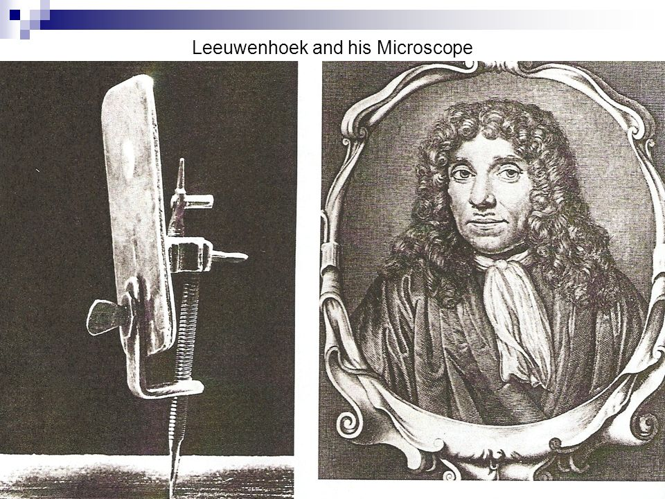 Leeuwenhoek and his Microscope