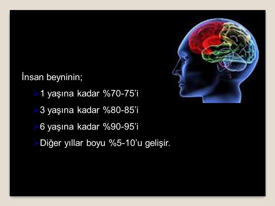İnsan beyninin;  1 yaşına kadar %70-75'i  3 yaşına kadar %80-85'i  6 yaşına kadar %90-95'i  Diğer yıllar boyu %5-10'u gelişir.