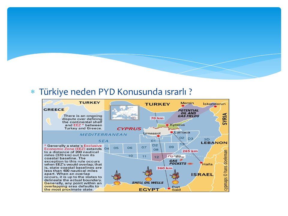  Türkiye neden PYD Konusunda ısrarlı
