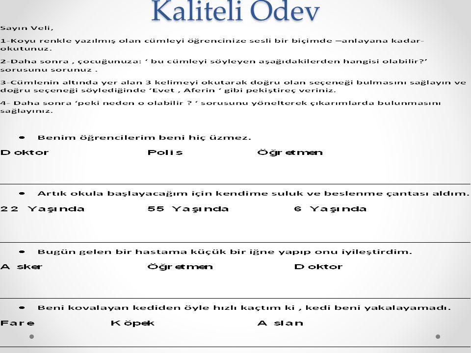 Kaliteli Ödev