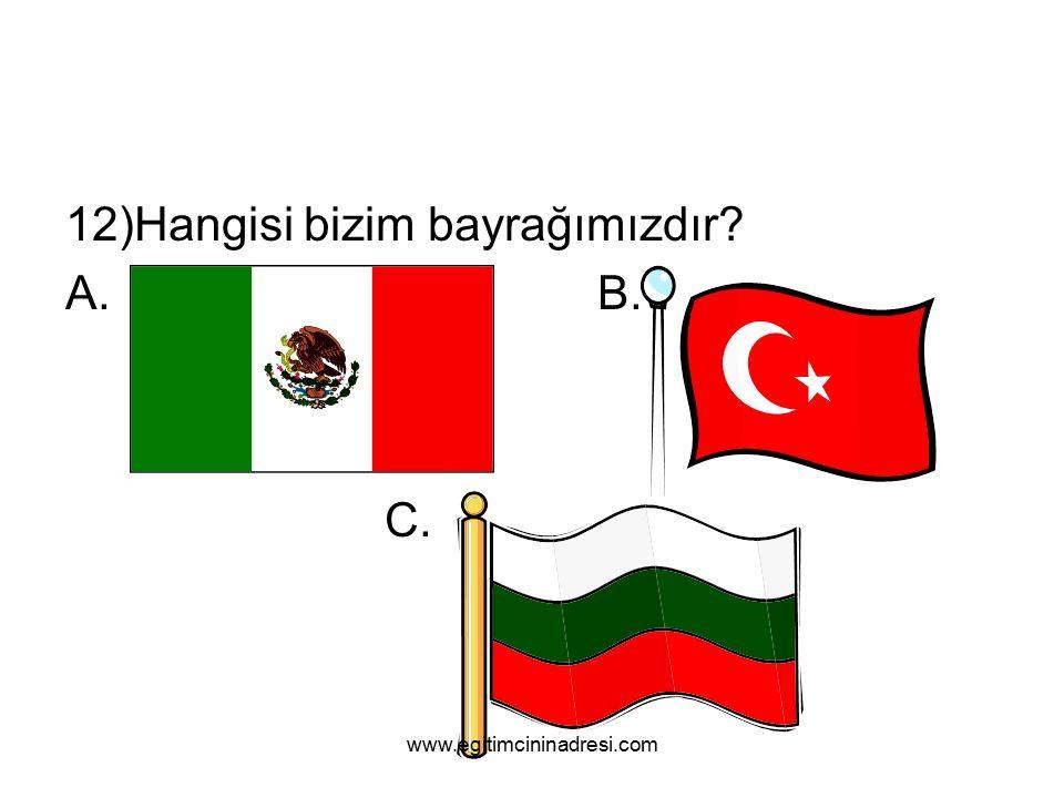 12)Hangisi bizim bayrağımızdır A.B. C. www.egitimcininadresi.com