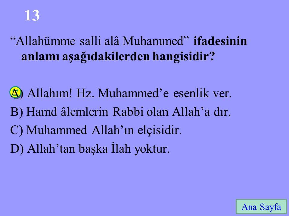 """13 Ana Sayfa """"Allahümme salli alâ Muhammed"""" ifadesinin anlamı aşağıdakilerden hangisidir? A) Allahım! Hz. Muhammed'e esenlik ver. B) Hamd âlemlerin Ra"""