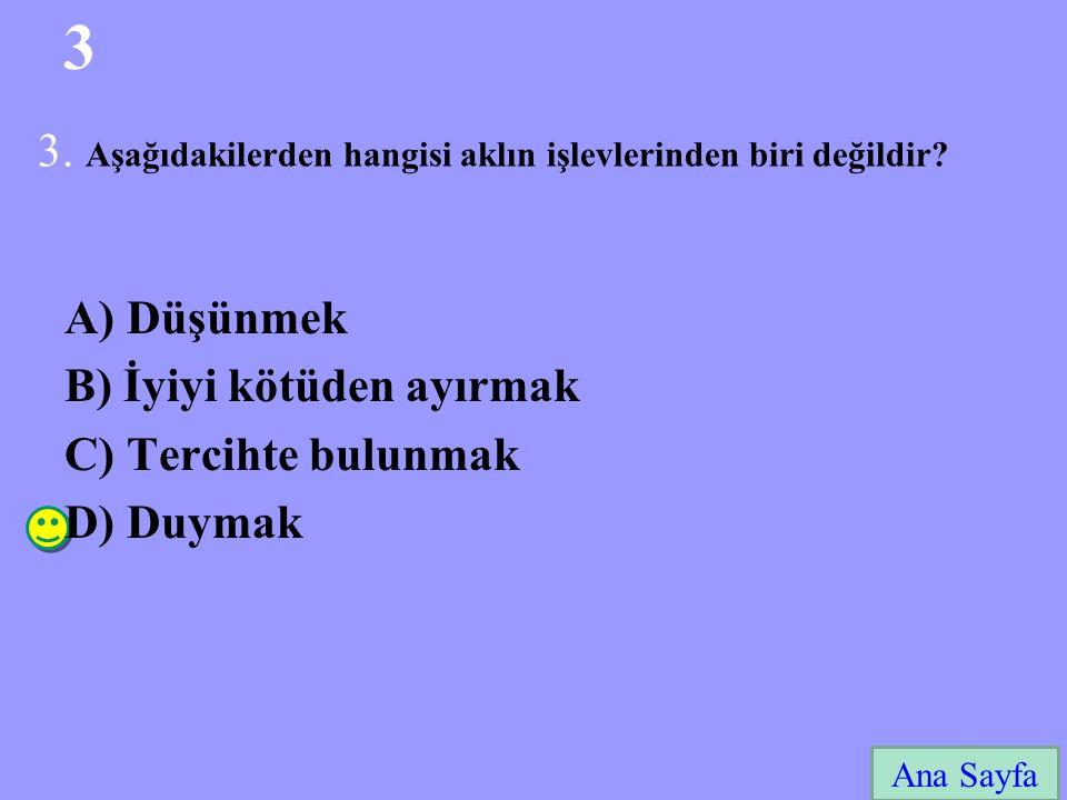 24 Ana Sayfa