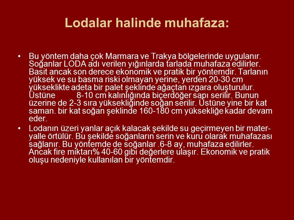 Lodalar halinde muhafaza: Bu yöntem daha çok Marmara ve Trakya bölgelerinde uygulanır. Soğanlar LODA adı verilen yığınlarda tarlada muhafaza edilirle
