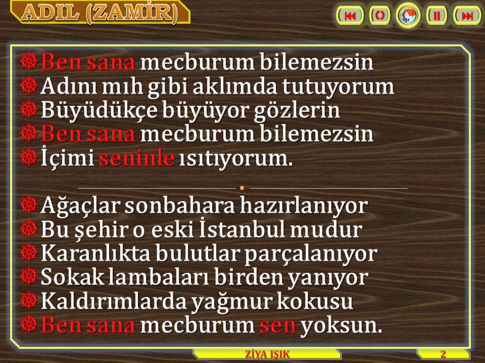 2 ZİYA IŞIK