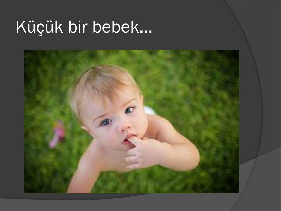 Küçük bir bebek…