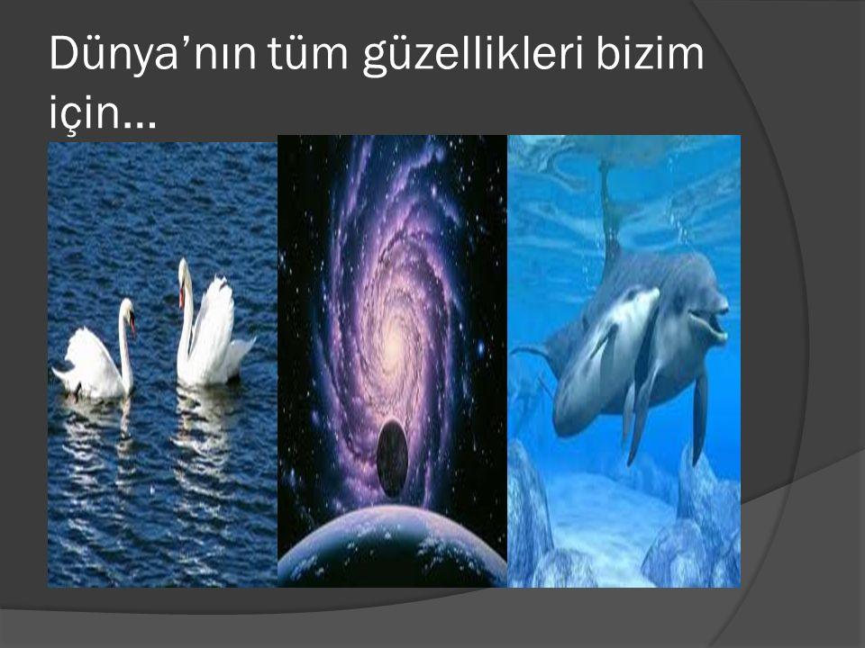 Unutma !Küçücük yardımlaşmalardır insanlığı ayakta tutan…