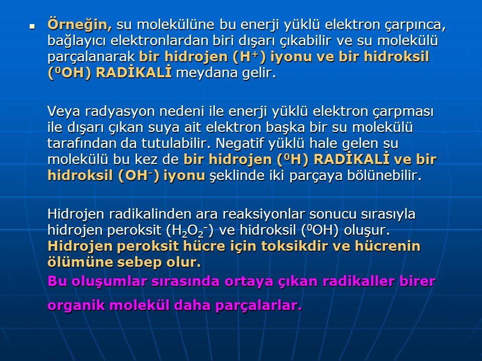 Örneğin, su molekülüne bu enerji yüklü elektron çarpınca, bağlayıcı elektronlardan biri dışarı çıkabilir ve su molekülü parçalanarak bir hidrojen (H +