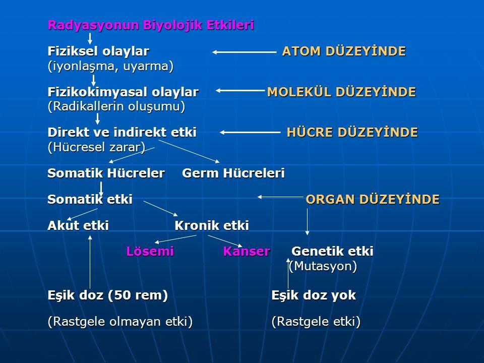 Radyasyonun Biyolojik Etkileri Fiziksel olaylar ATOM DÜZEYİNDE (iyonlaşma, uyarma) Fizikokimyasal olaylar MOLEKÜL DÜZEYİNDE (Radikallerin oluşumu) Dir