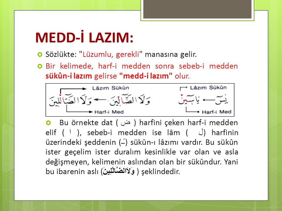 MEDD-İ LAZIM:  Sözlükte: