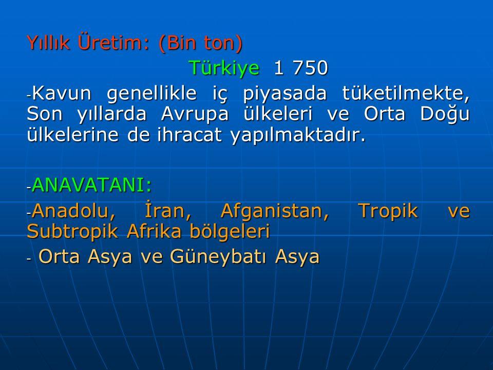 Yıllık Üretim: (Bin ton) Türkiye1 750 Türkiye1 750 - Kavun genellikle iç piyasada tüketilmekte, Son yıllarda Avrupa ülkeleri ve Orta Doğu ülkelerine de ihracat yapılmaktadır.