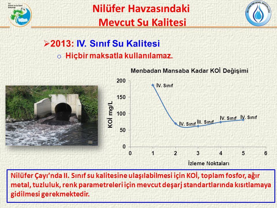 Nilüfer Çayı'nda II. Sınıf su kalitesine ulaşılabilmesi için KOİ, toplam fosfor, ağır metal, tuzluluk, renk parametreleri için mevcut deşarj standartl
