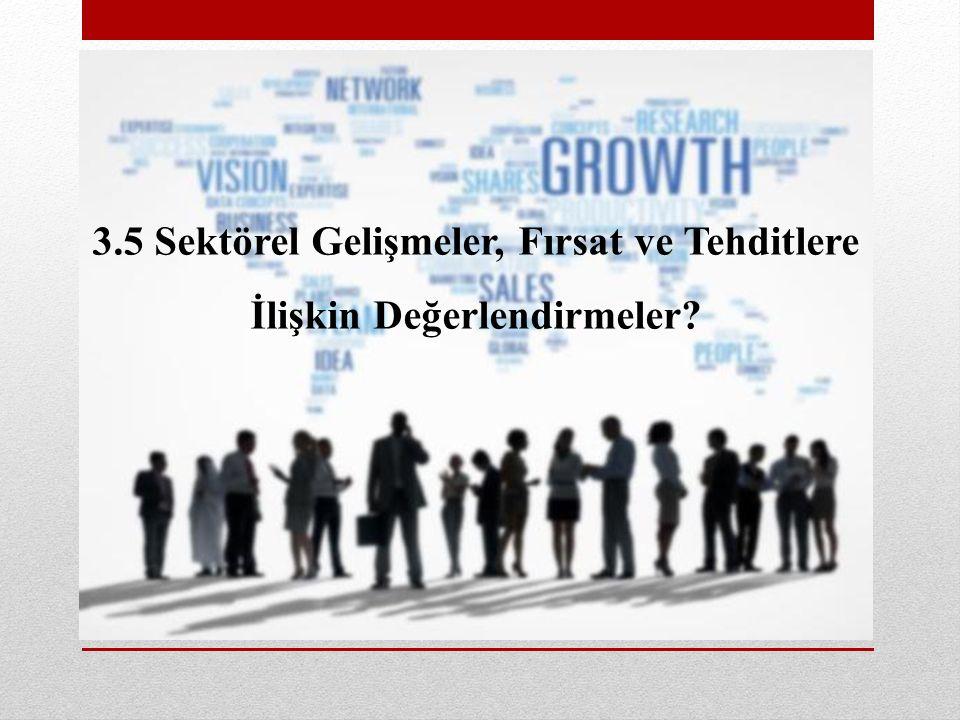 3.5 Sektörel Gelişmeler, Fırsat ve Tehditlere İlişkin Değerlendirmeler?