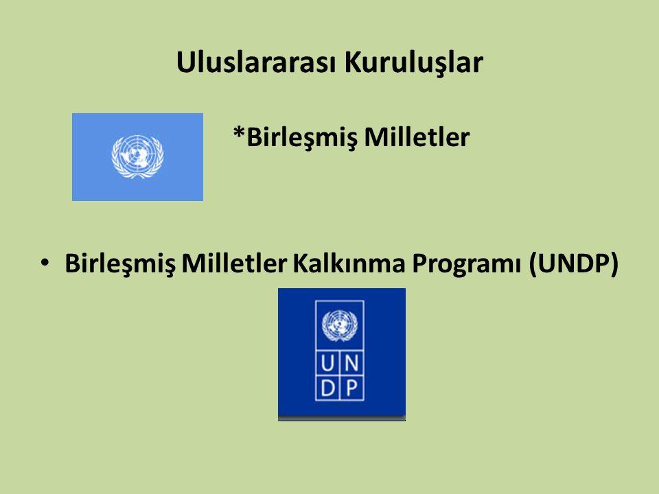 Uluslararası Kuruluşlar *Birleşmiş Milletler Birleşmiş Milletler Kalkınma Programı (UNDP)
