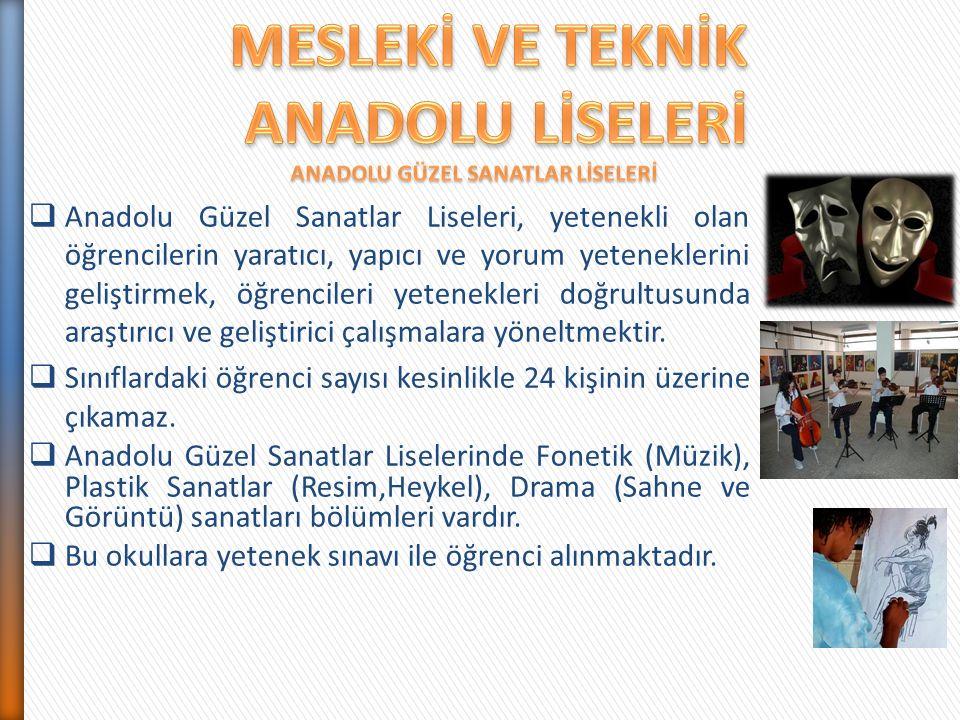  Anadolu Güzel Sanatlar Liseleri, yetenekli olan öğrencilerin yaratıcı, yapıcı ve yorum yeteneklerini geliştirmek, öğrencileri yetenekleri doğrultusunda araştırıcı ve geliştirici çalışmalara yöneltmektir.