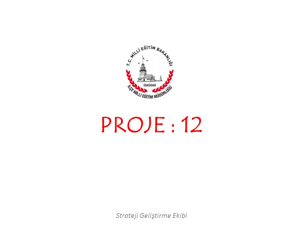 PROJE : 12 Strateji Geliştirme Ekibi
