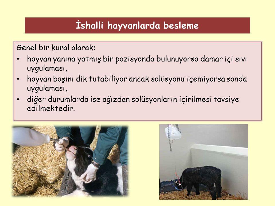 İshalli hayvanlarda besleme Genel bir kural olarak: hayvan yanına yatmış bir pozisyonda bulunuyorsa damar içi sıvı uygulaması, hayvan başını dik tutabiliyor ancak solüsyonu içemiyorsa sonda uygulaması, diğer durumlarda ise ağızdan solüsyonların içirilmesi tavsiye edilmektedir.