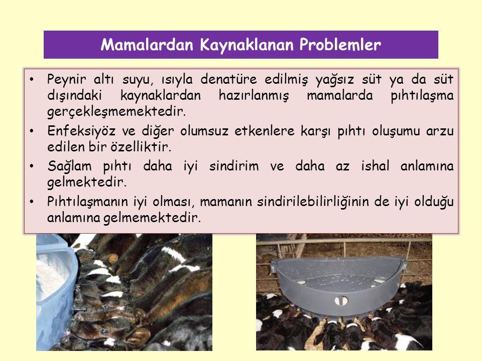 Mamalardan Kaynaklanan Problemler Peynir altı suyu, ısıyla denatüre edilmiş yağsız süt ya da süt dışındaki kaynaklardan hazırlanmış mamalarda pıhtılaşma gerçekleşmemektedir.