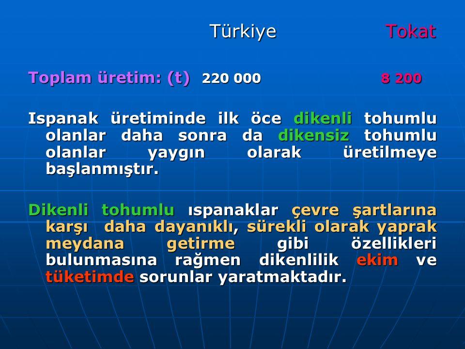 Türkiye Tokat Türkiye Tokat Toplam üretim: (t) 220 000 8 200 Ispanak üretiminde ilk öce dikenli tohumlu olanlar daha sonra da dikensiz tohumlu olanlar yaygın olarak üretilmeye başlanmıştır.