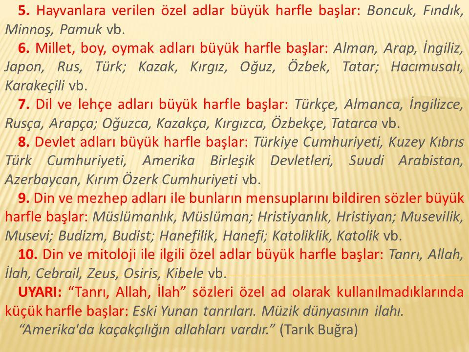 5.Hayvanlara verilen özel adlar büyük harfle başlar: Boncuk, Fındık, Minnoş, Pamuk vb.