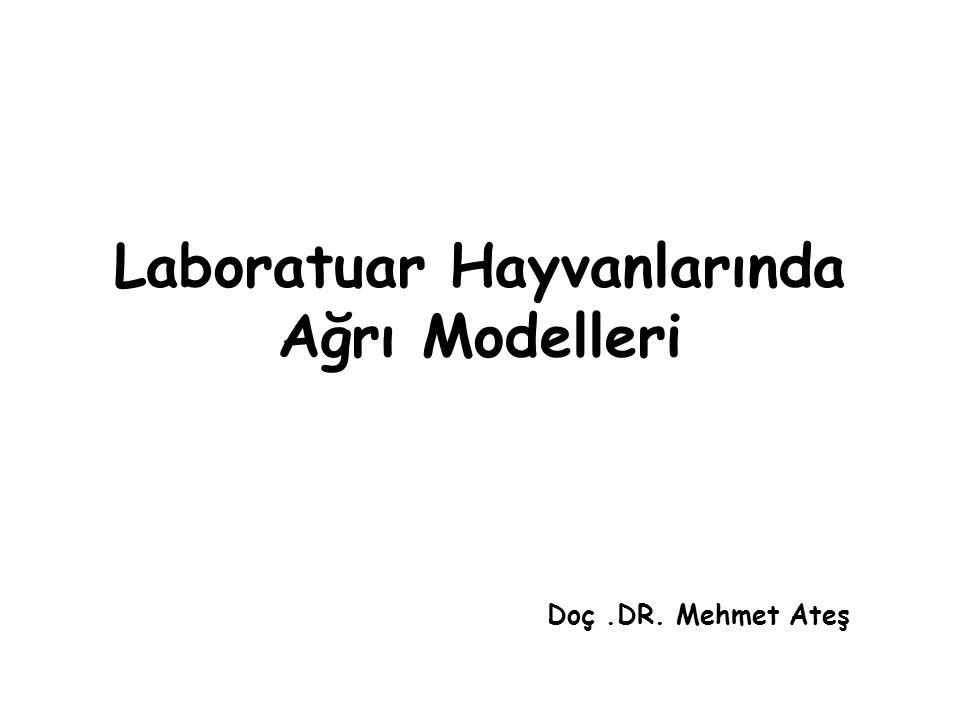 Laboratuar Hayvanlarında Ağrı Modelleri Doç.DR. Mehmet Ateş