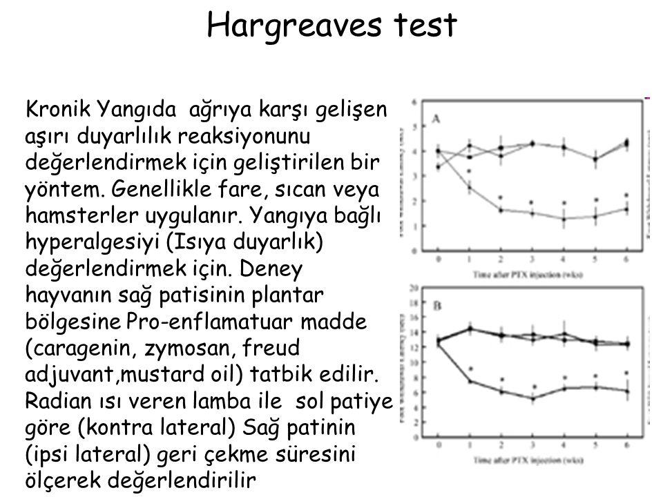 Hargreaves test Kronik Yangıda ağrıya karşı gelişen aşırı duyarlılık reaksiyonunu değerlendirmek için geliştirilen bir yöntem. Genellikle fare, sıcan