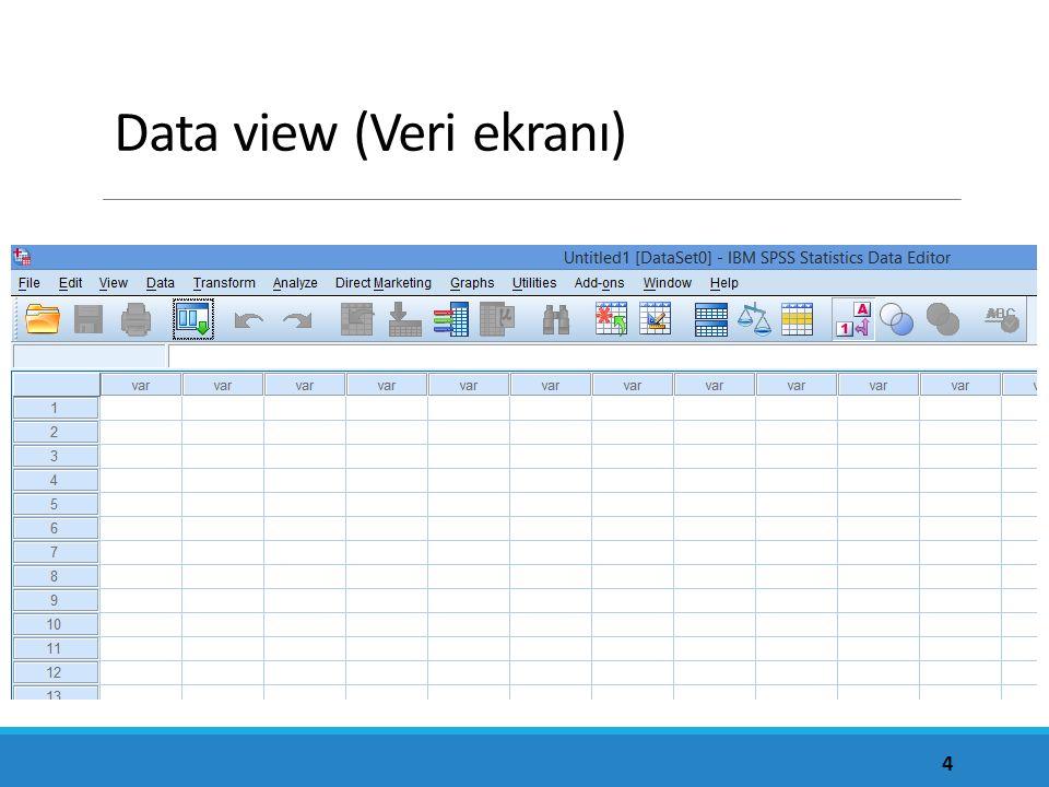 Data view (Veri ekranı) 4