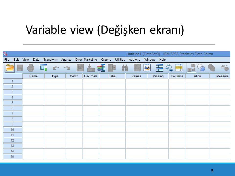 Variable view (Değişken ekranı) 5