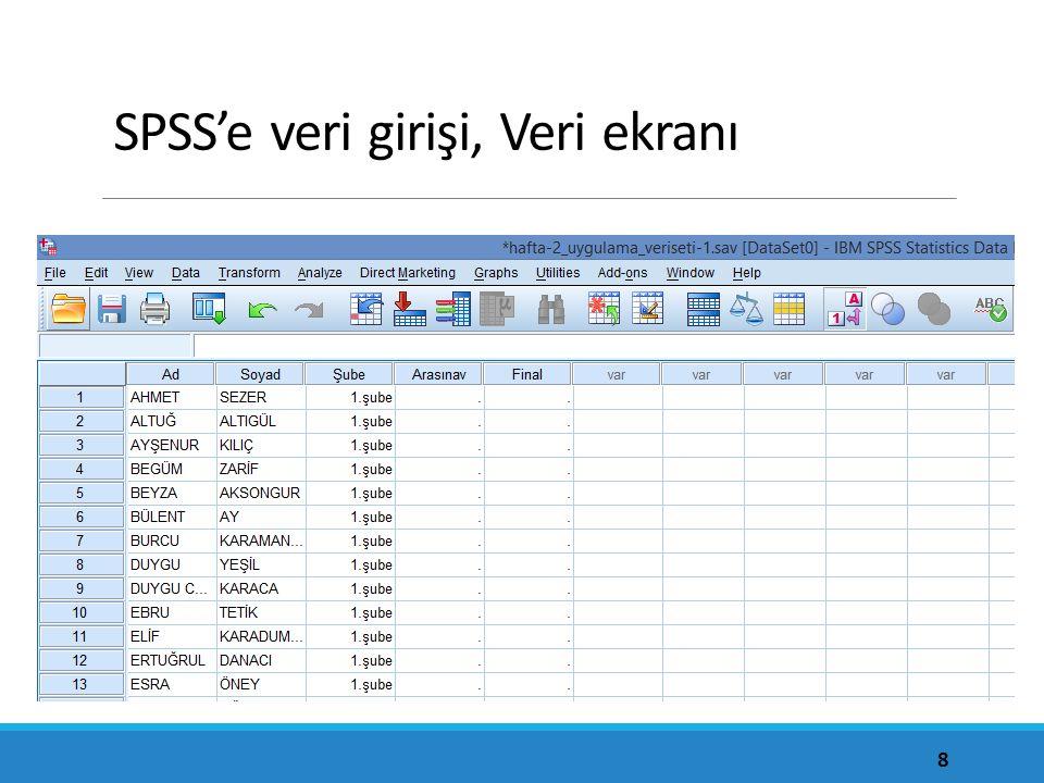 SPSS'e veri girişi, Veri ekranı 8