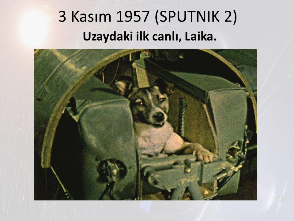 3 Kasım 1957 (SPUTNIK 2) Uzaydaki ilk canlı, Laika.
