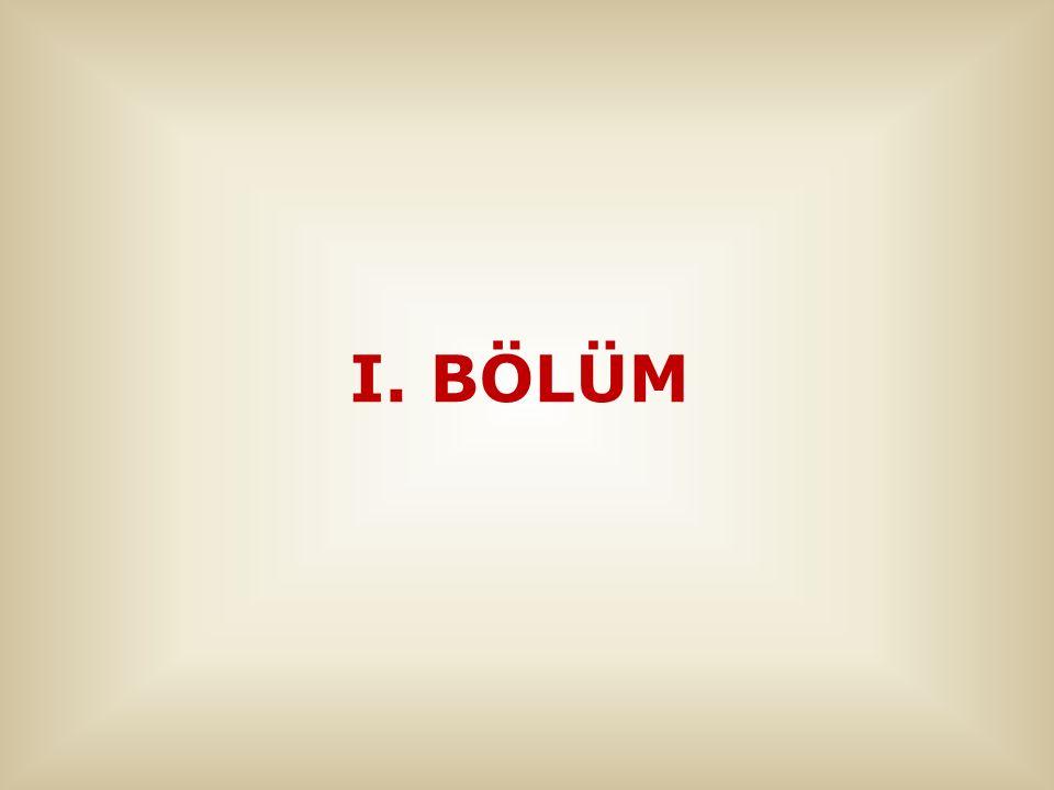 I. BÖLÜM