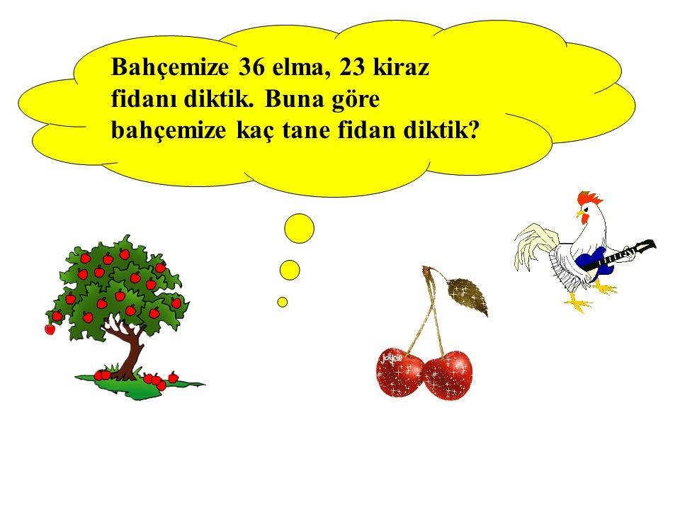 Bahçemize 36 elma, 23 kiraz fidanı diktik. Buna göre bahçemize kaç tane fidan diktik?