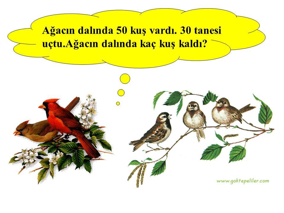 Ağacın dalında 50 kuş vardı. 30 tanesi uçtu.Ağacın dalında kaç kuş kaldı?