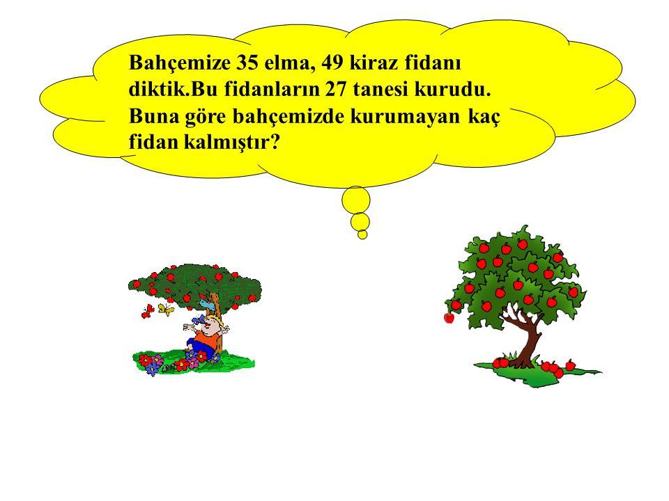 Bahçemize 35 elma, 49 kiraz fidanı diktik.Bu fidanların 27 tanesi kurudu. Buna göre bahçemizde kurumayan kaç fidan kalmıştır?
