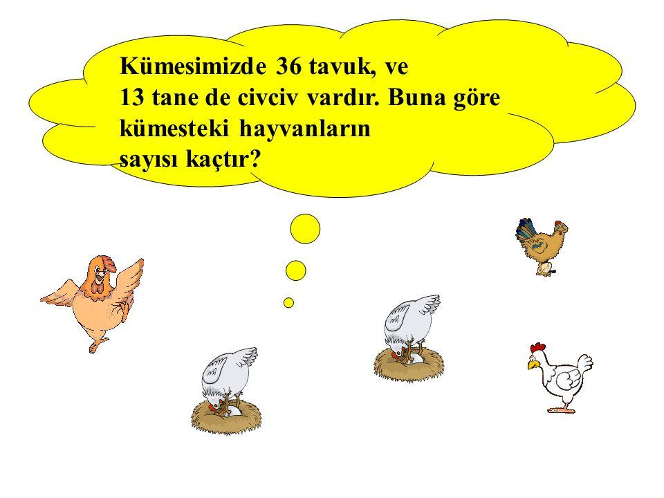 Kümesimizde 36 tavuk, ve 13 tane de civciv vardır. Buna göre kümesteki hayvanların sayısı kaçtır?