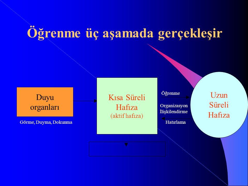 Duyu organları Kısa Süreli Hafıza (aktif hafıza) Uzun Süreli Hafıza Görme, Duyma, DokunmaHatırlama Öğrenme Organizasyon İlişkilendirme Öğrenme üç aşam