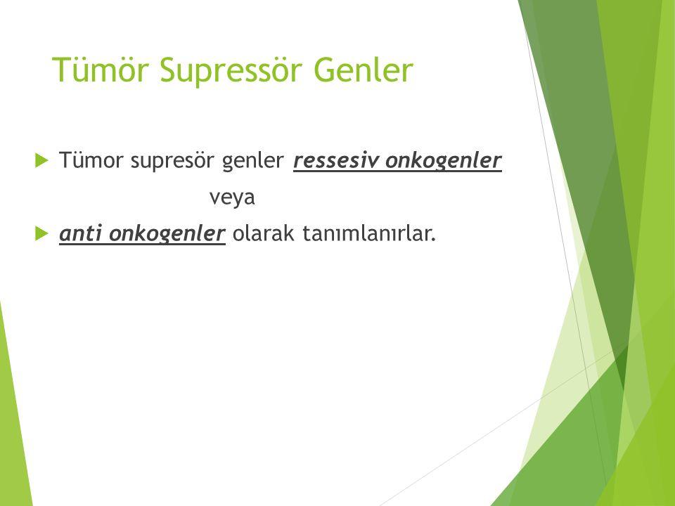 Tümör Supressör Genler  Tümor supresör genler ressesiv onkogenler veya  anti onkogenler olarak tanımlanırlar.