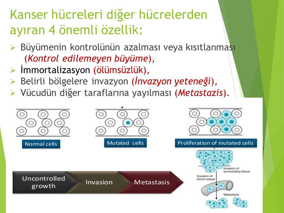 Kanser hücreleri diğer hücrelerden ayıran 4 önemli özellik:  Büyümenin kontrolünün azalması veya kısıtlanması (Kontrol edilemeyen büyüme),  İmmortal