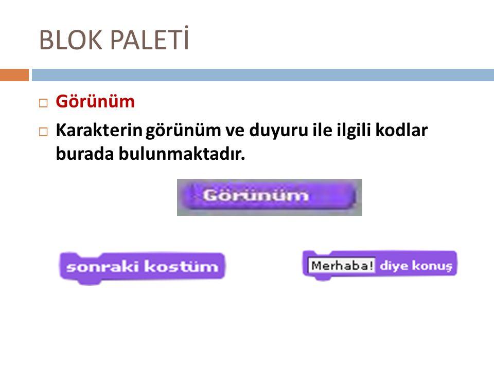 BLOK PALETİ GGörünüm KKarakterin görünüm ve duyuru ile ilgili kodlar burada bulunmaktadır.