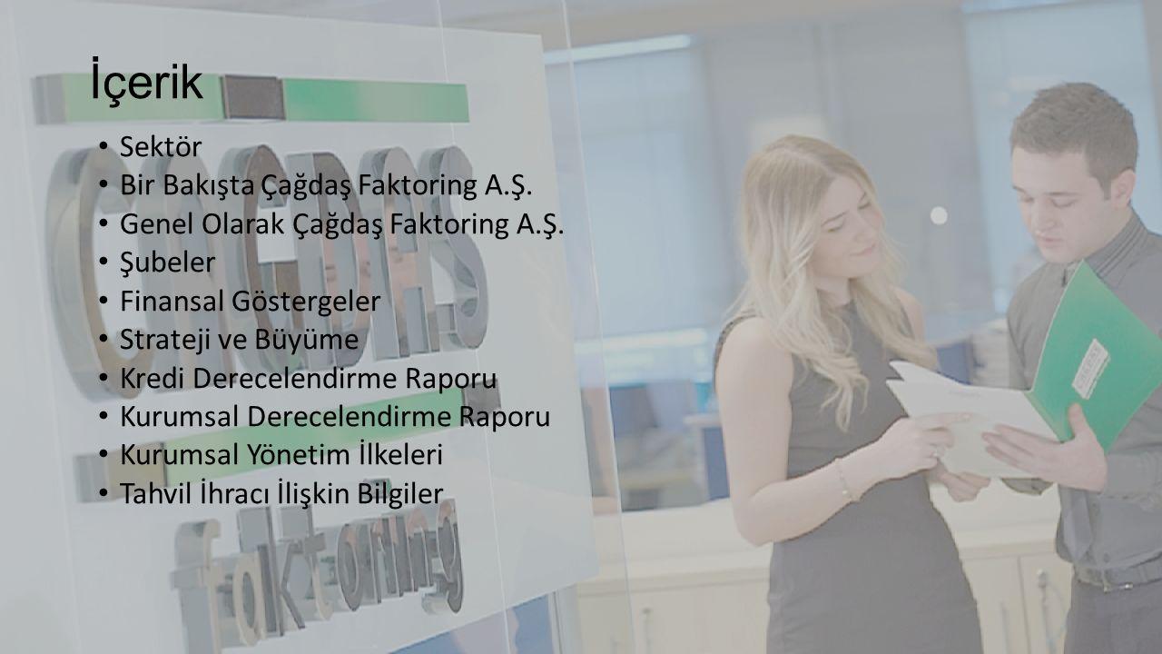 Sektör Türkiye faktoring sektöründe 2015 yıl sonu itibarıyla 66 faktoring şirketi bulunmaktadır.