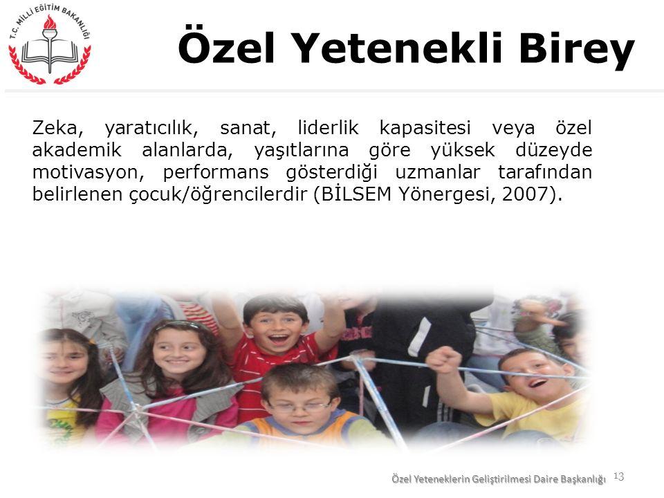 Zeka, yaratıcılık, sanat, liderlik kapasitesi veya özel akademik alanlarda, yaşıtlarına göre yüksek düzeyde motivasyon, performans gösterdiği uzmanlar tarafından belirlenen çocuk/öğrencilerdir (BİLSEM Yönergesi, 2007).