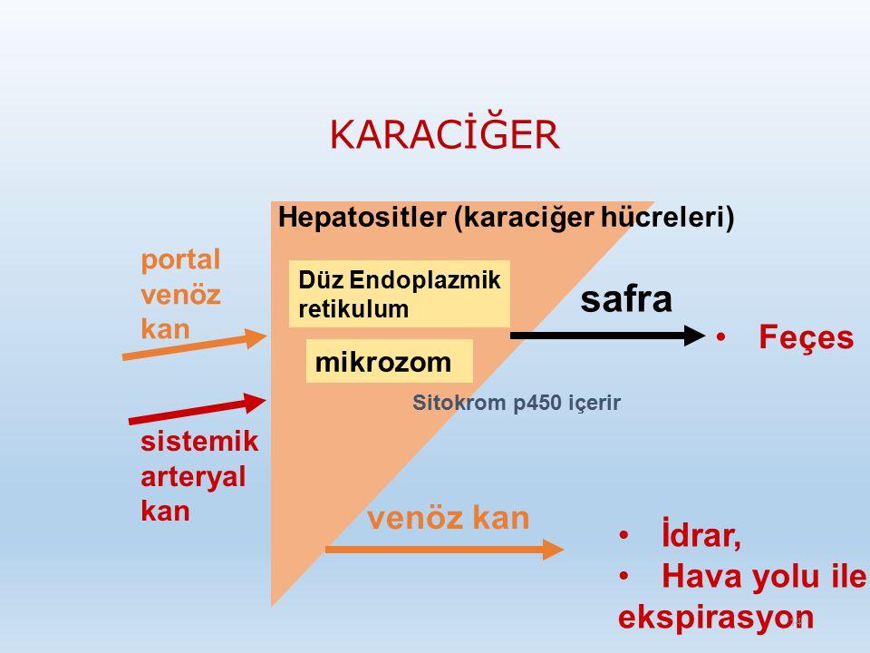 KARACİĞER portal venöz kan sistemik arteryal kan safra venöz kan Hepatositler (karaciğer hücreleri) Düz Endoplazmik retikulum mikrozom Sitokrom p450 içerir Feçes İdrar, Hava yolu ile ekspirasyon 14