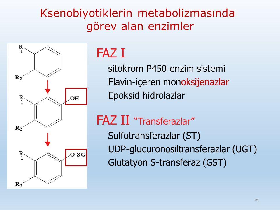 Ksenobiyotiklerin metabolizmasında görev alan enzimler FAZ I sitokrom P450 enzim sistemi Flavin-içeren monoksijenazlar Epoksid hidrolazlar FAZ II Transferazlar Sulfotransferazlar (ST) UDP-glucuronosiltransferazlar (UGT) Glutatyon S-transferaz (GST) 18