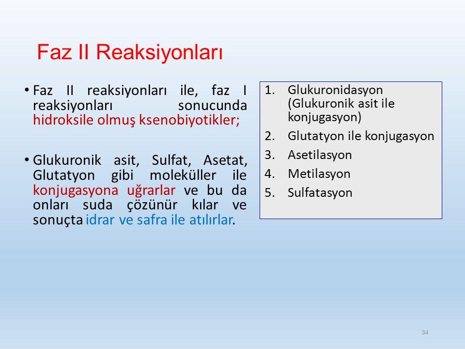 Faz II Reaksiyonları Faz II reaksiyonları ile, faz I reaksiyonları sonucunda hidroksile olmuş ksenobiyotikler; Glukuronik asit, Sulfat, Asetat, Glutatyon gibi moleküller ile konjugasyona uğrarlar ve bu da onları suda çözünür kılar ve sonuçta idrar ve safra ile atılırlar.
