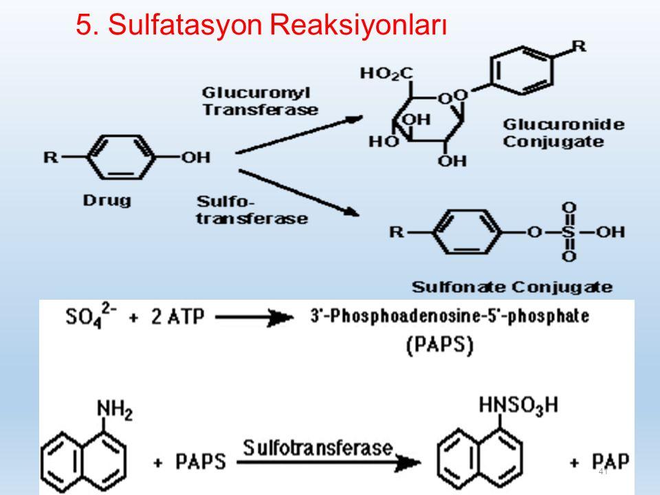 5. Sulfatasyon Reaksiyonları 41