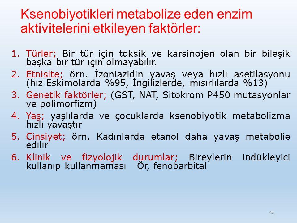 Ksenobiyotikleri metabolize eden enzim aktivitelerini etkileyen faktörler: 1.Türler; Bir tür için toksik ve karsinojen olan bir bileşik başka bir tür için olmayabilir.