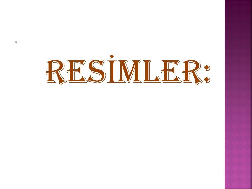  RES İ MLER: